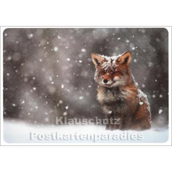 SKOKO Postkarte Winter - Fuchs im Schnee
