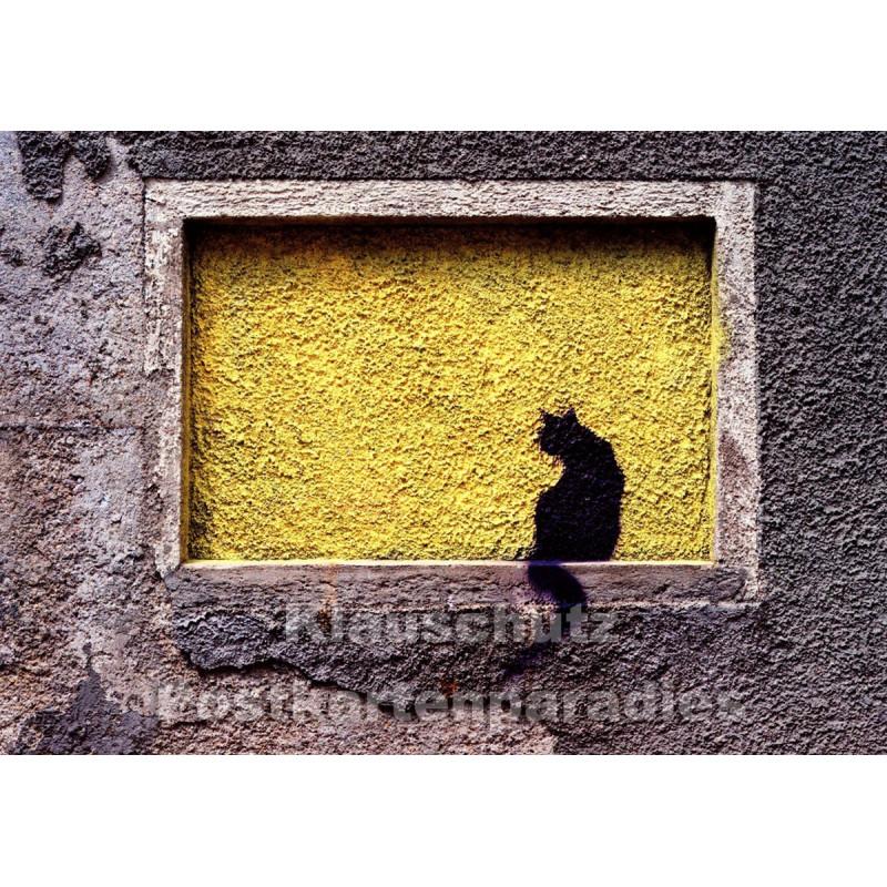 Wandkatze - Foto Postkarte von Huraxdax / Discordia