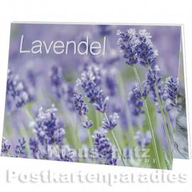Rannenberg und Friends Postkartenbuch | Lavendel
