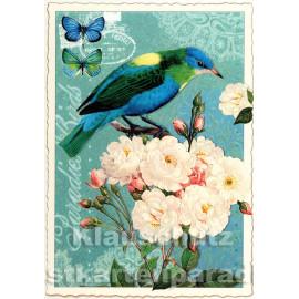 Retro Glitterkarte - Paradise Birds - Edition Tausenschön