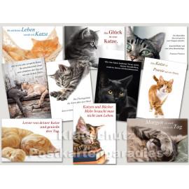 Katzen Postkarten mit Sprüchen und Zitaten - Sparpaket
