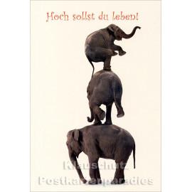 Elefantenturm | Doppelkarte Geburtstag