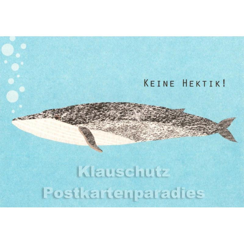 Holzschliffpappe Postkarte von Studio Blankensteyn | Wal - Keine Hektik!