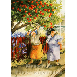 Alte Frauen klauen Äpfel - Taurus Postkarte von Inge Löök