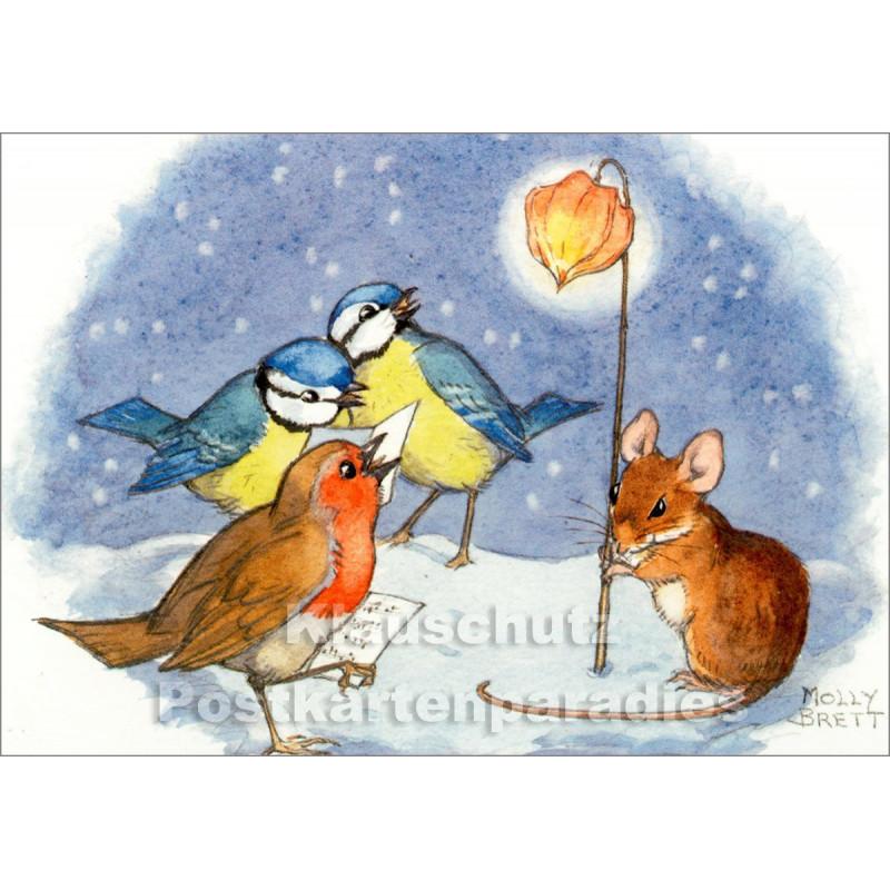 Kinder Postkarte Weihnachten   Maus und Vögel beim abendlichen Konzert