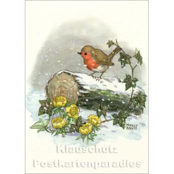 Kinder Postkarte Weihnachten von Molly Brett | Winter Rotkehlchen