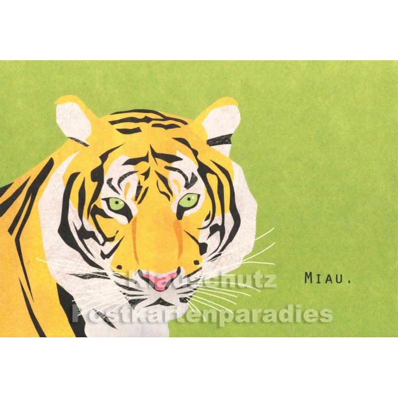 Holzschliffpappe Postkarten von Studio Blankensteyn   Tiger - Miau