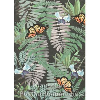 Holzschliffpappe Postkarte von Studio Blankensteyn | Schmetterlinge