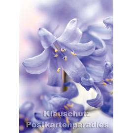 Hasenglöckchen - Blumen Postkarte vom Postkartenparadies