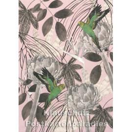 Holzschliffpappe Postkarte von Studio Blankensteyn | Papageien