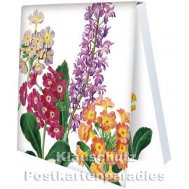 Primeln und Orchidee | Rannenberg Klebezettel