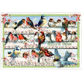 Retro Glitterkarte aus der Edition Tausendschön | Vögel - Herzliche Grüße