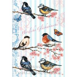 Doppelkarte mit Vögeln zum Geburtstag - Edition Tausendschön