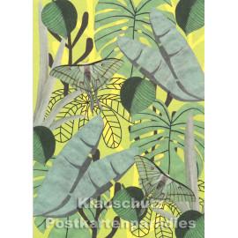 Holzschliffpappe Postkarte von Studio Blankensteyn   Monarchfalter