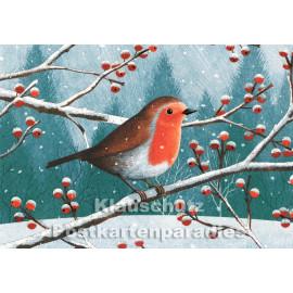 Rotkehlchen im Winter auf Ast sitzend - SkoKo Grafik Postkarte