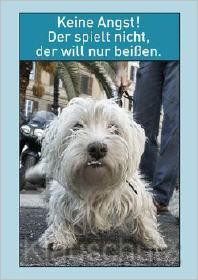 Lustige Hunde Postkarte - Der will nur beißen